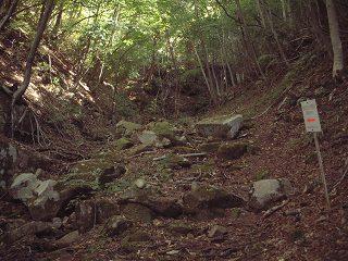 だんだんと険しくなってくる登山道