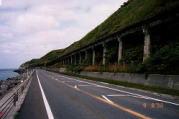 鉄道廃線跡に残る高架